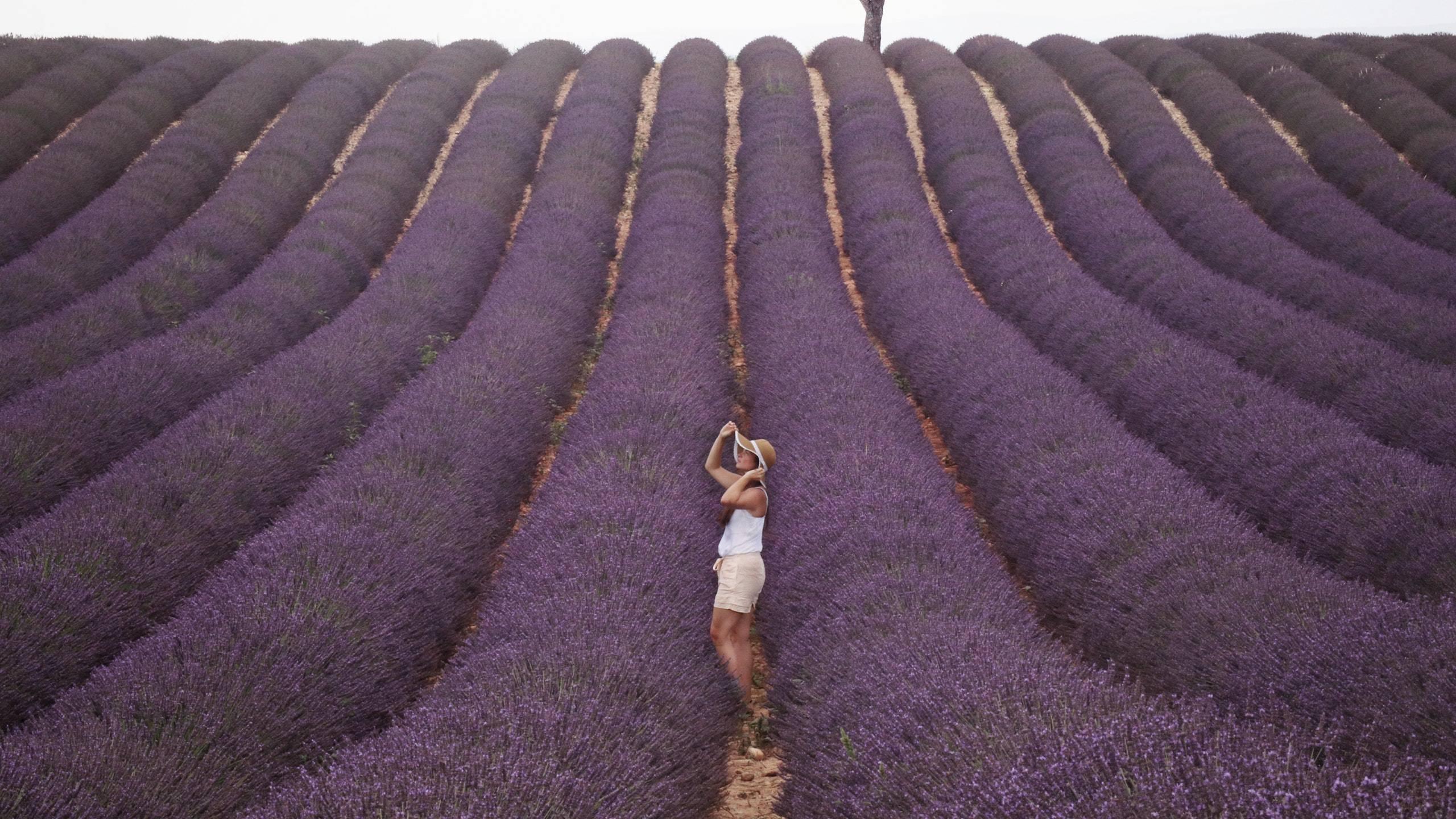 Hotel-Tuscania-Panoramico-Tuscania-Viterbo-landscape-lavender-2